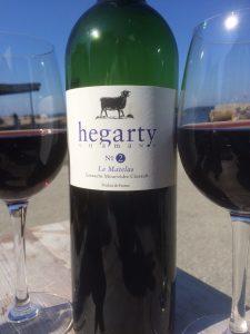 Hegarty rød 1