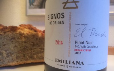 Ugens Vin – økologisk Pinot Noir fra Chile