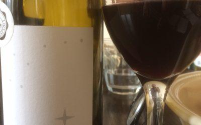 Ugens Vin – økologisk rød Côtes-du-Rhône fra Pascal Chalon