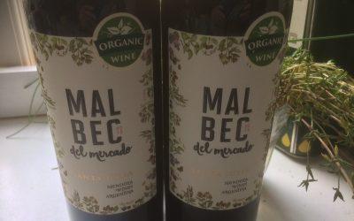 Ugens Vin – økologisk Malbec fra Argentina
